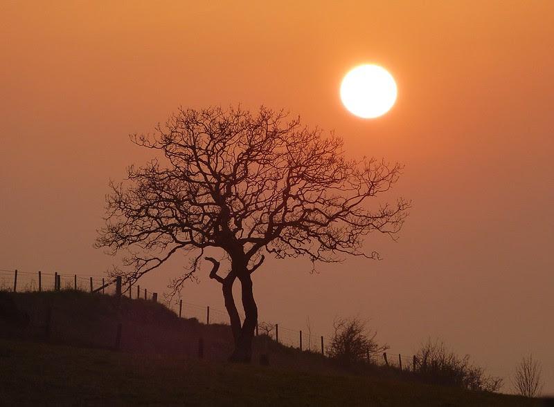 P1070058 - Sunset, Gopa Hill