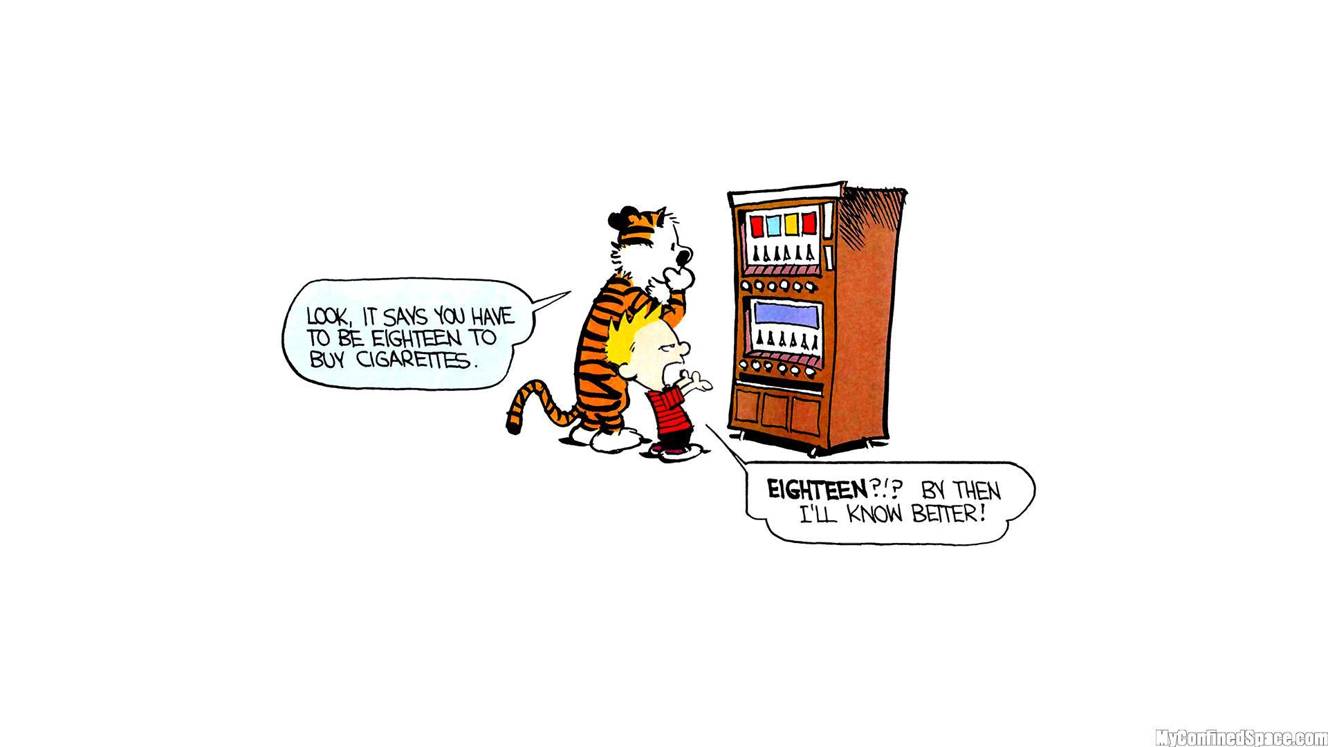 Hd Calvin Hobbes Comics Free Images Wallpaper Download Free 141280