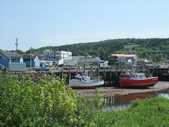 Bay of Fundy boats