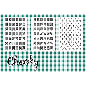 INTRODUCTION PRICE!!! 2012 New Collection of Jumbo Nail Art Image Plates. Bundle of 3 Nail Art Jumbo Image Plates (Z2) with 168 Nail Art Designs At a Killer Price, By Cheeky.