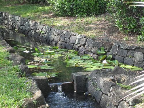 flume Mauritius