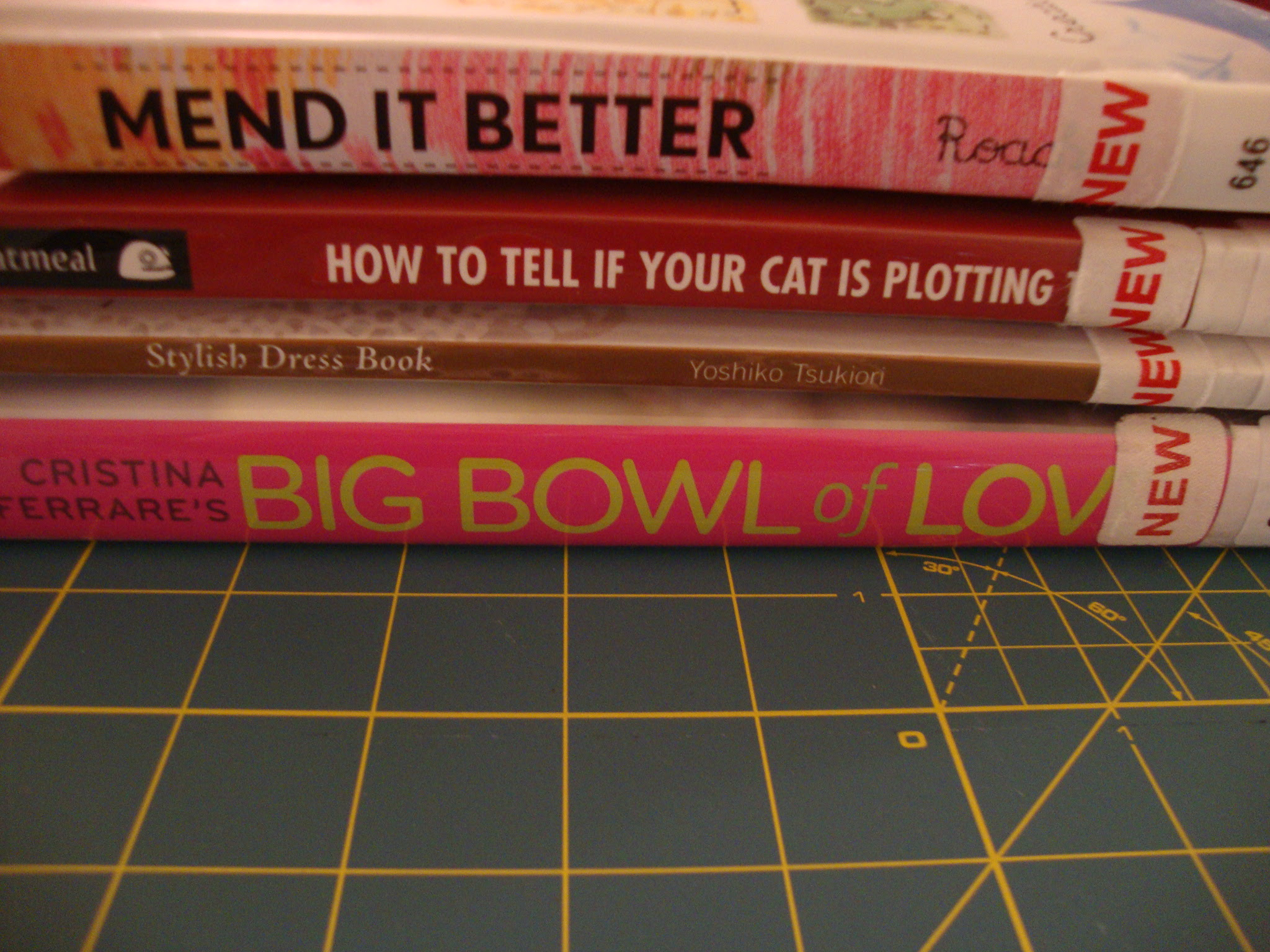 Princeton Public Library books this week