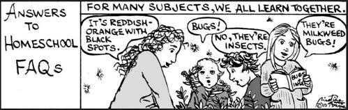 Home Spun comic strip #535