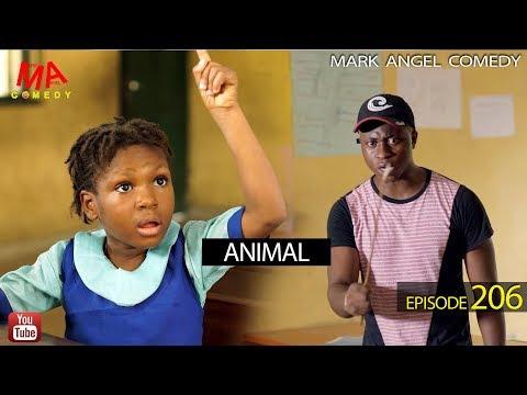 Animal | Mark Angel Comedy
