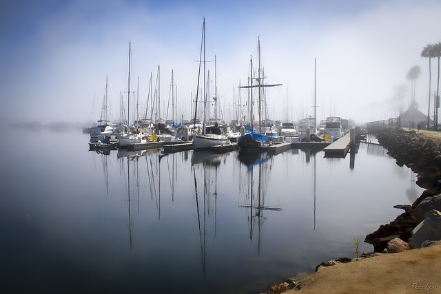 Shoreline Village fog