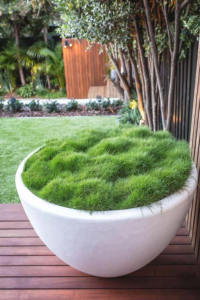 Rozelle House - Garden Design Sydney (New) - Bell Landscapes