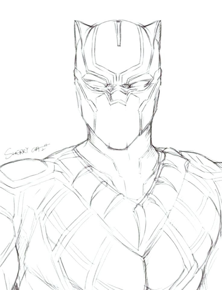 Beautiful Black Panther Characters Coloring Pages Anyoneforanyateam