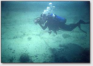 """Грэг Литтл делает подводные снимки открытой им и его женой """"Платформы Андроса""""."""