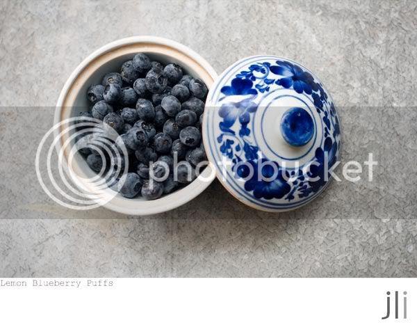 lemon blueberry puffs,profiteroles,lemon curd,food photography,sydney,jillian leiboff imaging,baking