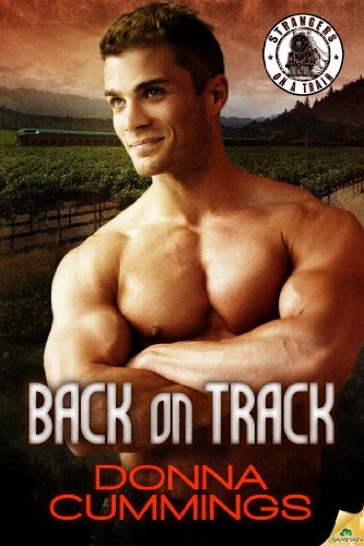 Back on Track (Strangers on a Train) by Donna Cummings