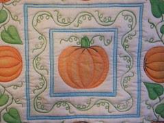 Colored pumpkins close up
