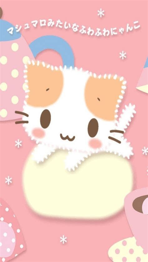 cute kitty  korea iphone  wallpapers hd