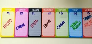 Nifty Study Calendar