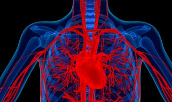 diagram of chest showing heart and blood vessels