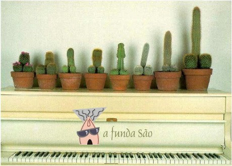piano com cactos malandrecos