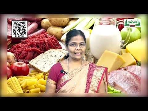 11th Food and Nutrition உணவு ஓர் அறிமுகம் அலகு 1 பகுதி 2 Kalvi TV