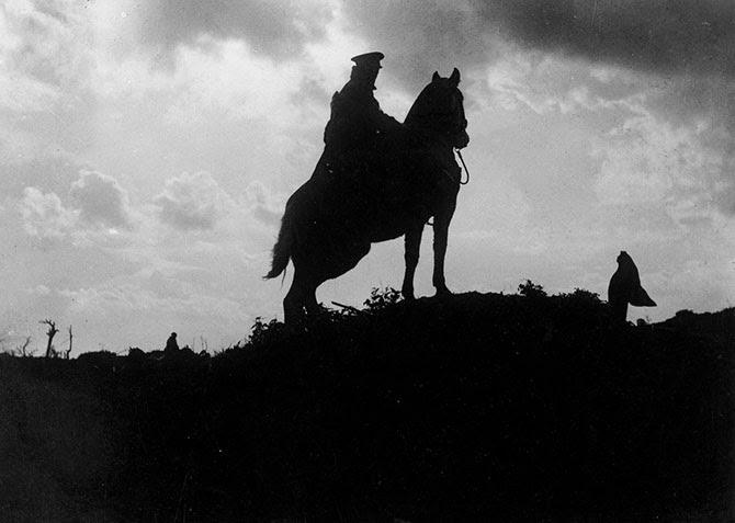 Животные Первой Мировой войны