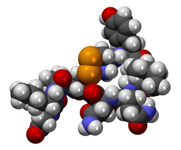 File:OxitocinaCPK3D.png