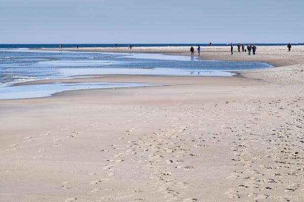 at Crane Beach