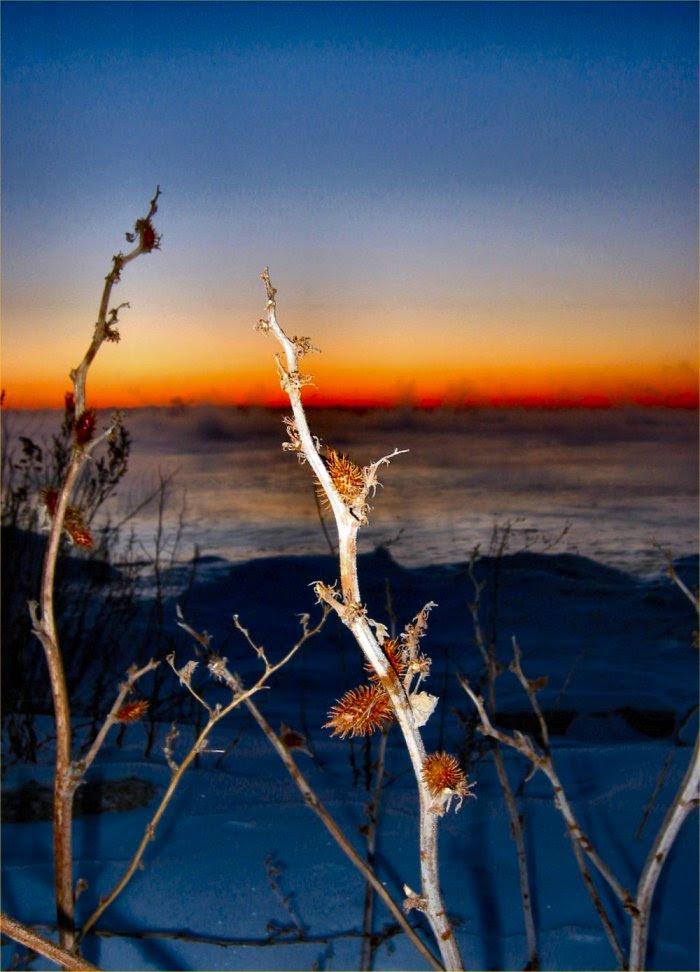 soul-amp ice pics