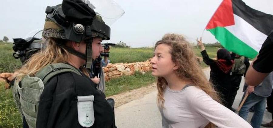Βοήθησε να ελευθερώσουμε την κόρη μου, Αχέντ Ταμίμι - Ψηφοφορία AVAAZ : -  ERT Open