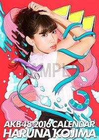 Haruna Kojima 2016 AKB48 B2 calendar /