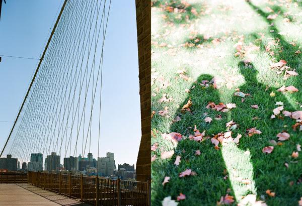 NYCblog13.jpg