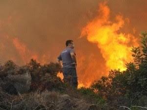 Πυρκαγιά ξέσπασε στον Θεολόγο