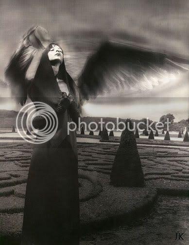 J. K. Potter - Angel wings