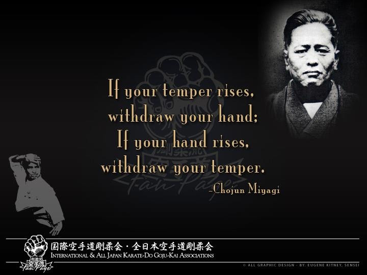 Quotes About Martial Art Training 19 Quotes