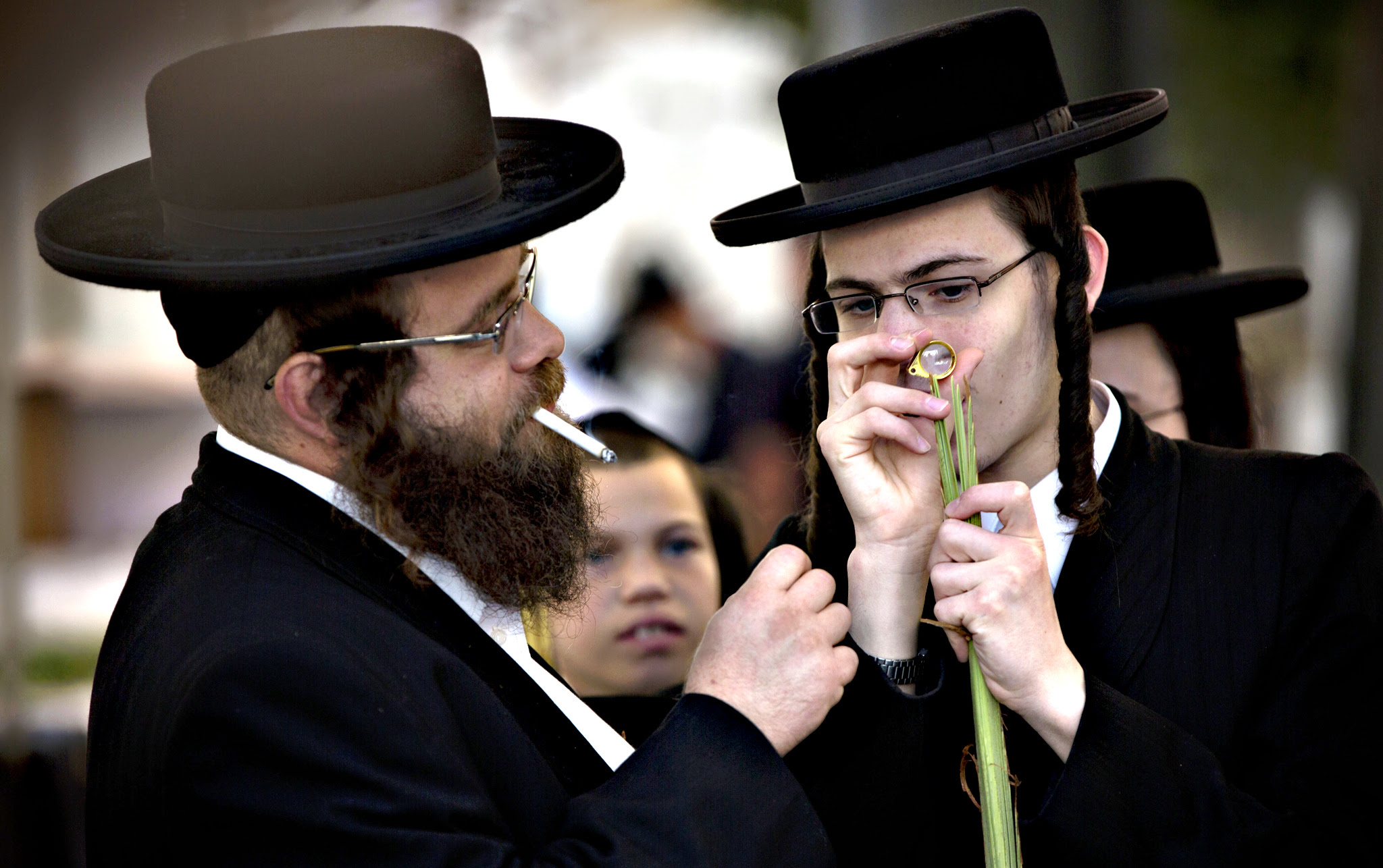 Ultra-Orthodox Jews check palm fronds to determine if they are ritually acceptable as one of the four items used as a symbol on the Jewish holiday of Sukkot in Jerusalem, Thursday, Sept. 24, 2015. The holiday commemorates the Israelites 40 years of wandering in the desert and a decorated hut is erected outside religious households as a sign of temporary shelter. The weeklong holiday begins on Sunday
