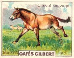gilbert chevaux005
