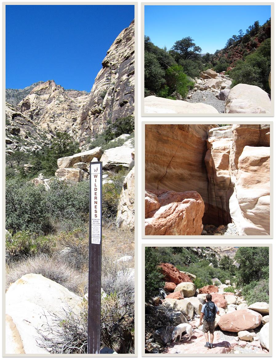 oak creek canyon, red rock
