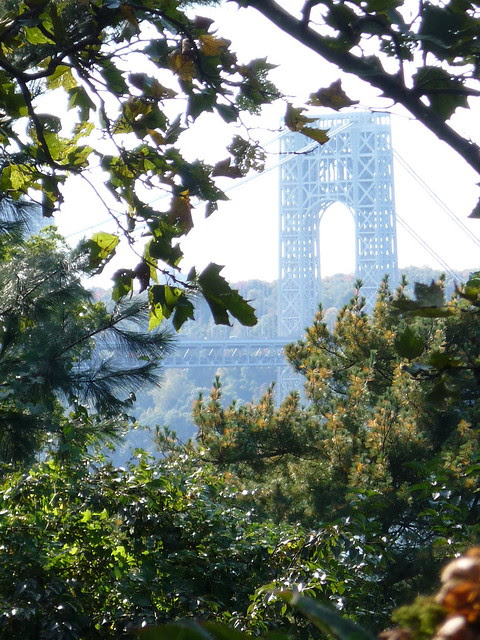 From an Autumn Walk in Upper Manhattan
