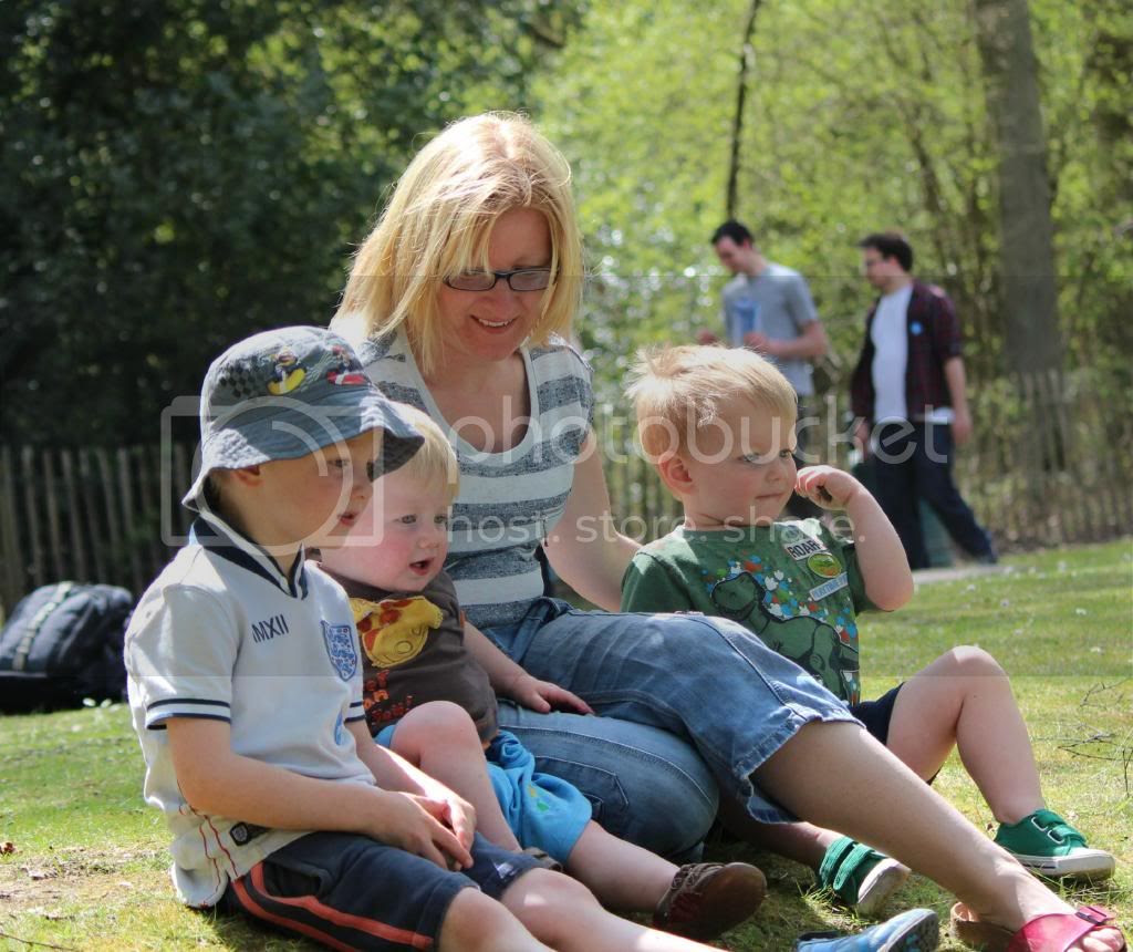 Family day at Wellington Country Park