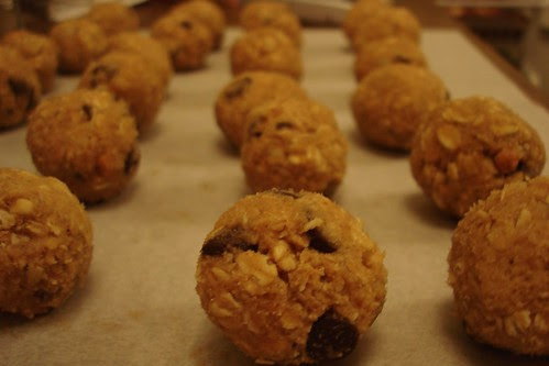 Chunky Peanut Butter & Oatmeal Chocolate Chipsters
