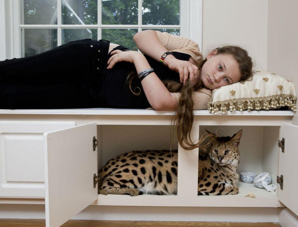 O Mundo de Amelia - A menina que cresceu com os animais e os considera seus irmãos 19
