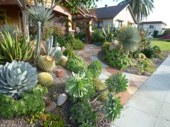 Plants Comprehensive | SelectLandscapesBlog