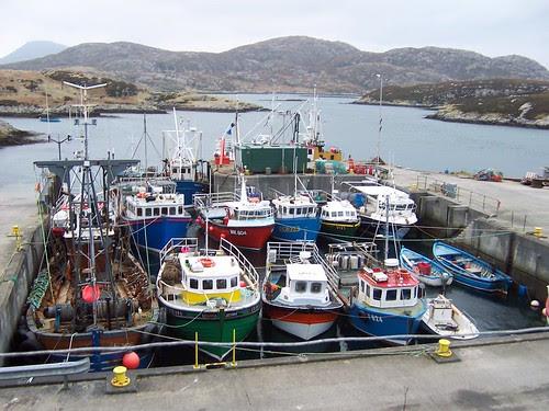 Kallin Harbour, Grimsay