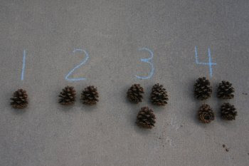 Montessori Outdoors: Numbers and Counters from What DID We Do All Day? (Photo by Deb Chitwood)
