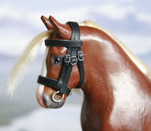 Fred - bridle