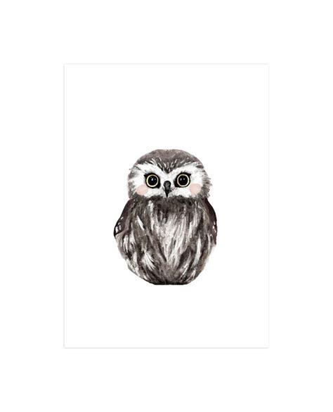 Baby Animal Owl Wall Art Prints by Cass Loh   Minted