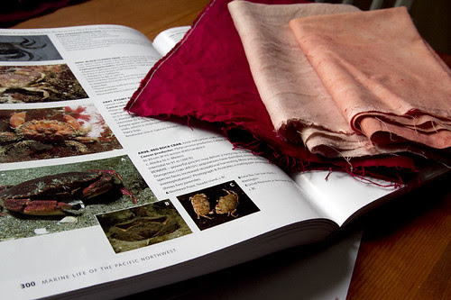 natural dyed fabrics and planning