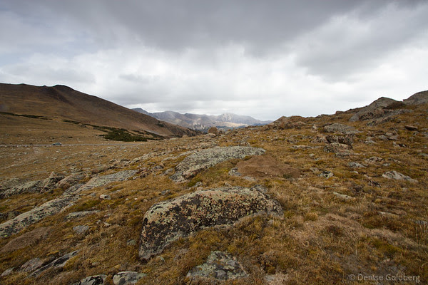 along Trail Ridge Road