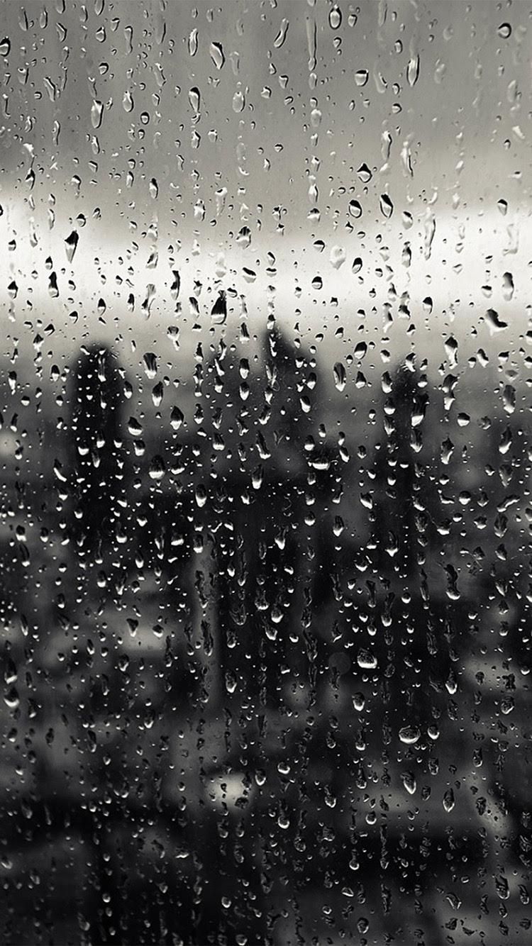 Vq33 Rain Window Nature Pattern