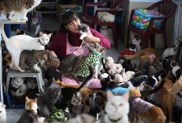 A enfermeira peruana Maria Torero ao lado de seus gatos em sua casa em Lima (Foto: Martin Mejia/AP)