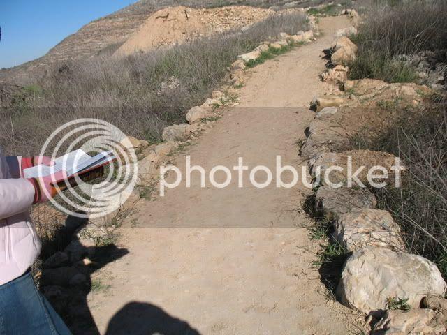 Tel Shiloh II 1