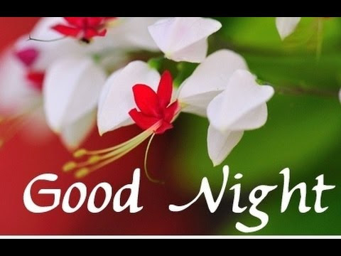 Hindi Good Night Sms Good Night Shayari Whatsapp Shayari