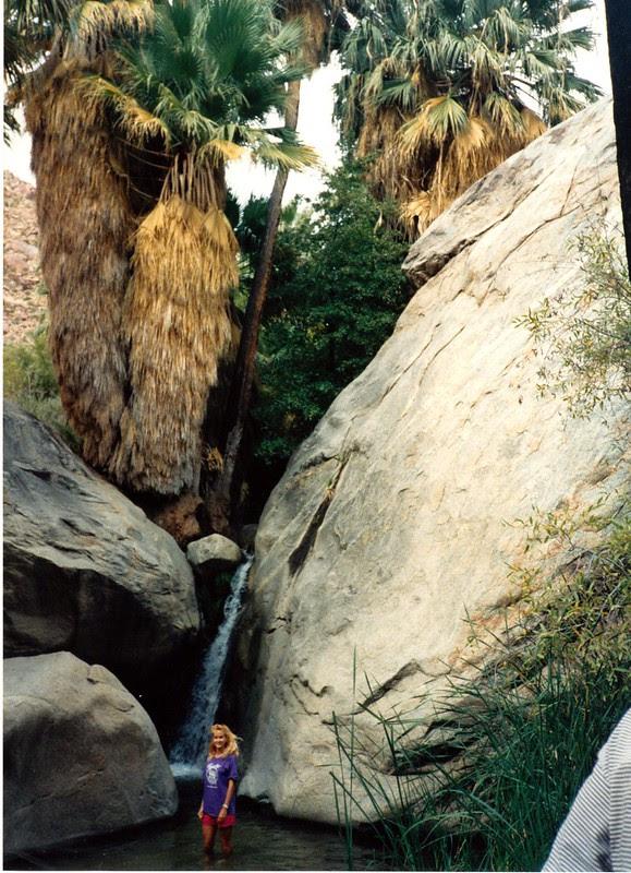 Borrego Palm Canyon