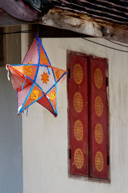 Star IMG_5996-w